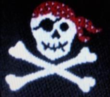 Foto 2 information .Piraten überfallen wieder Frachter Febr.2011-Sicherheitsexperten planen Task Force