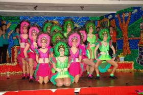karneval kostüm rio samba brasil grün pink