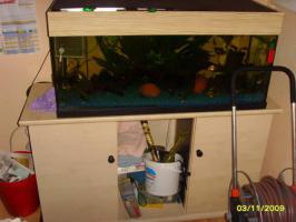komplett.Aquarium mit unterschrankt fischen ca 30 (100 x40 x50 200L )