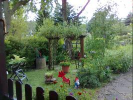 Foto 5 liebevoll angelegter Pachtgarten in Kranichfeld zu verkaufen