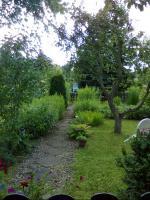 Foto 6 liebevoll angelegter Pachtgarten in Kranichfeld zu verkaufen