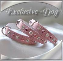 mini Hunde Strass Halsbänder Chihuahua Prager Rattler by EXCLUSIVE-DOG