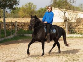 mobile Tierbetreuung. Pferde, Hunde, Katzen und Co!
