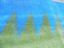 Foto 2 neue Rasenteppiche