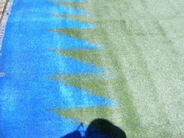 Foto 7 neue Rasenteppiche