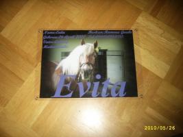 Foto 3 **~Boxenschilder - Warnschilder - Visitenkarten - Futterpläne - Einlaminiert!~**