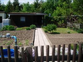 pachtgarten in kleingartenanlage Fortschritt