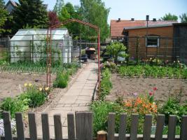 Foto 2 pachtgarten in kleingartenanlage Fortschritt