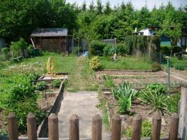 Foto 5 pachtgarten in kleingartenanlage Fortschritt