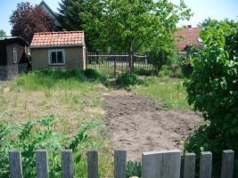 Foto 6 pachtgarten in kleingartenanlage Fortschritt