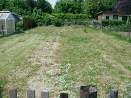 Foto 7 pachtgarten in kleingartenanlage Fortschritt