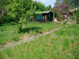 Foto 8 pachtgarten in kleingartenanlage Fortschritt