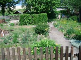 Foto 9 pachtgarten in kleingartenanlage Fortschritt