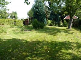 Foto 5 schönes Pachtgartengrundstück umständehalber zu verkaufen