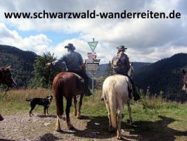 schwarzwald-wanderreiten Reiten für Erwachsene Todtmoos Au