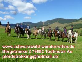 Foto 2 schwarzwald-wanderreiten Reiten für Erwachsene Todtmoos Au