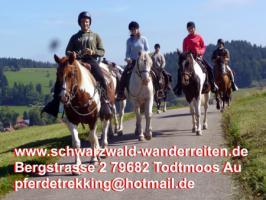 Foto 7 schwarzwald-wanderreiten Todtmoos Au - Reiten für Outdoor-Fans