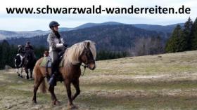 Foto 4 schwarzwald-wanderreiten, Pferdetrekking, Reiten für Outdoor-Fans