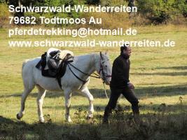 Foto 7 schwarzwald-wanderreiten, Pferdetrekking, Reiten für Outdoor-Fans
