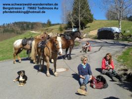 Foto 3 schwarzwald-wanderreiten, Reitferien im Schwarzwald, Reiten nicht nur für Frauen, Todtmoos Au