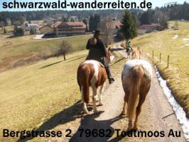 Foto 8 schwarzwald-wanderreiten, Reitferien im Schwarzwald, Reiten nicht nur für Frauen, Todtmoos Au