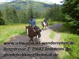 Foto 10 schwarzwald-wanderreiten, Reitferien im Schwarzwald, Reiten nicht nur für Frauen, Todtmoos Au