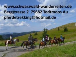 Foto 14 schwarzwald-wanderreiten, Reitferien im Schwarzwald, Reiten nicht nur für Frauen, Todtmoos Au