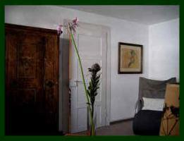 Foto 6 sehr schön gelegene, sonnige 2,5-Zi-Wohnung