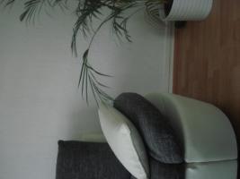 Foto 3 sofa gruppe echtleder+stoff