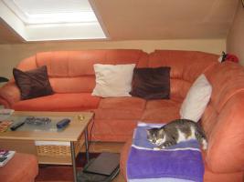 sofa mit hocker und schrankwand