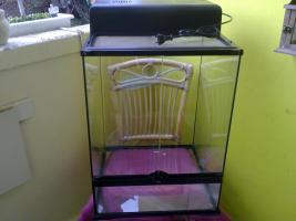 super günstiges Terrarium für  50€ VHB !!!!!!!!!