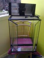 Foto 2 super günstiges Terrarium für  50€ VHB !!!!!!!!!