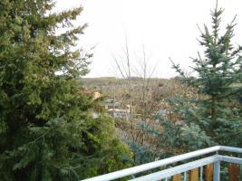 Foto 11 traumhafte 2-Raum Dachgeschosswohnung mit Blick ins Grüne