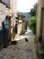 Foto 15 verkaufe Ein Ferienhaus in Süd Frankreich (VAR)
