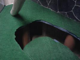 Foto 4 verkaufe neues grosses eckterrarium mit einrichtung