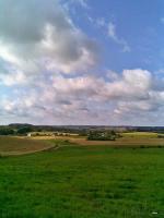 1 ha Grundstück in Polen zu verpachten
