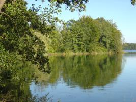 Foto 3 1 ha Grundstück in Polen zu verpachten