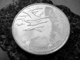 Foto 5 10 Euro Gedenkmünzen aus Silber Jahressatz 2004