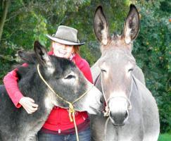 Foto 7 10-jährige Eselstute/ Riesenesel, geritten