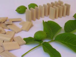 1000 Stk Dominosteine aus naturbelassenem Holz NEU