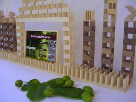 Foto 5 1000 Stk Dominosteine aus naturbelassenem Holz NEU