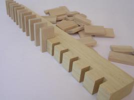 Foto 3 1000 Stk Dominosteine aus naturbelassenen Holz