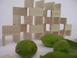 Foto 2 1000 Stk Dominosteine aus naturbelassenen Holz