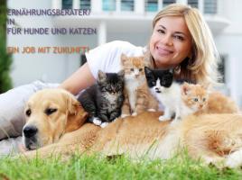 ❤️ Neu Job mit Zukunft 2019 Nahrung Berater Hund Katze Schweden