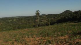 Foto 3 11 Hektar Grundstück in Paraguay bei Independencia direkt am Asphalt