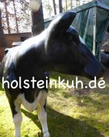 Foto 4 1100,00 € kostet die neue Holstein - Friesian Deko Kuh lebensgross … www.holsteinkuh.de … Tel. 03376730750