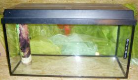 112l Aquarium mit Zubehör günstig zu verkaufen