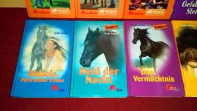 Foto 7 12 x Kinderbuch Abenteuer Pferde / 25€ VERSANDKOSTENFREI!
