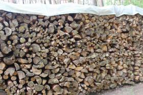 Foto 4 17,5 m³ Brennholz, Kiefern-Meterholz getrocknet & gespalten