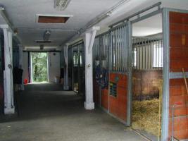 Foto 2 2 Fensterboxen + 1 Innenbox frei
